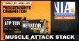 Kraftzuwachs-Garantie mit Muscle Attack Stack